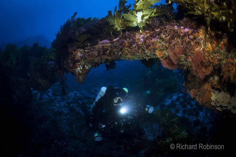 Elingamite wreck Richard Robinson