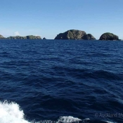 Cavalli Islands – here's where we're going to sneak in our first dive before we reach the Three Kings tomorrow at dawn © Auckland Museum