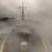 One Three Kings marine expedition team – shaken and stirred. We're hiding from a nasty wee storm right now but not before we took some video footage to give you a taster of the weather. © Auckland Museum